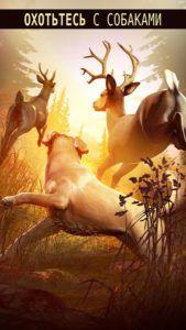 Deer Hunter 2018 на rusgamelife.ru