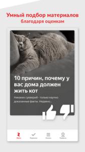 Яндекс.Дзен-02
