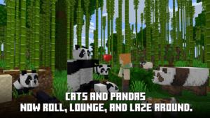 Пробная версия Minecraft-04