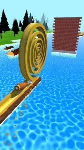Spiral Roll-03