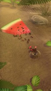 Little Ant Colony-04